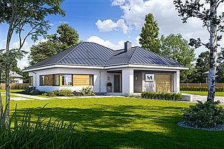 Projekt domu Wymowny D49