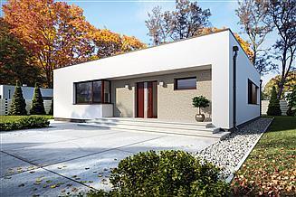 Projekt domu Igo