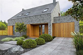 Projekt domu Iwo