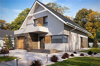 Projekt domu Dana