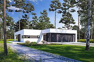 Projekt domu Śmiały D58