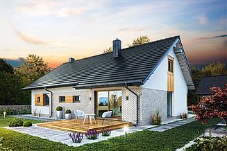Projekt domu Domena 103 T