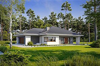 Projekt domu Naturalny D60