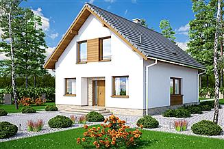 Projekt domu Lungo 3