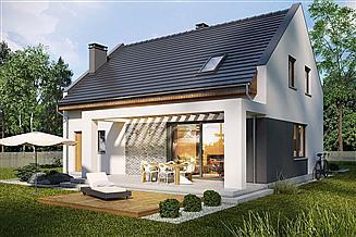 Projekt domu Primo