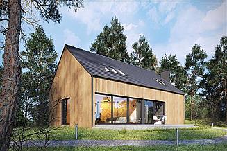 Projekt domu Studio 71